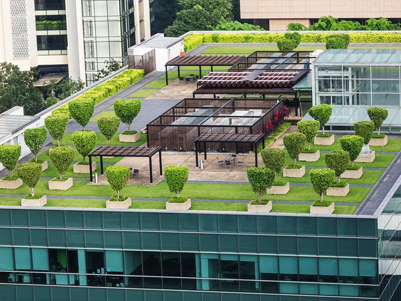 telhado-verde-sobre-laje
